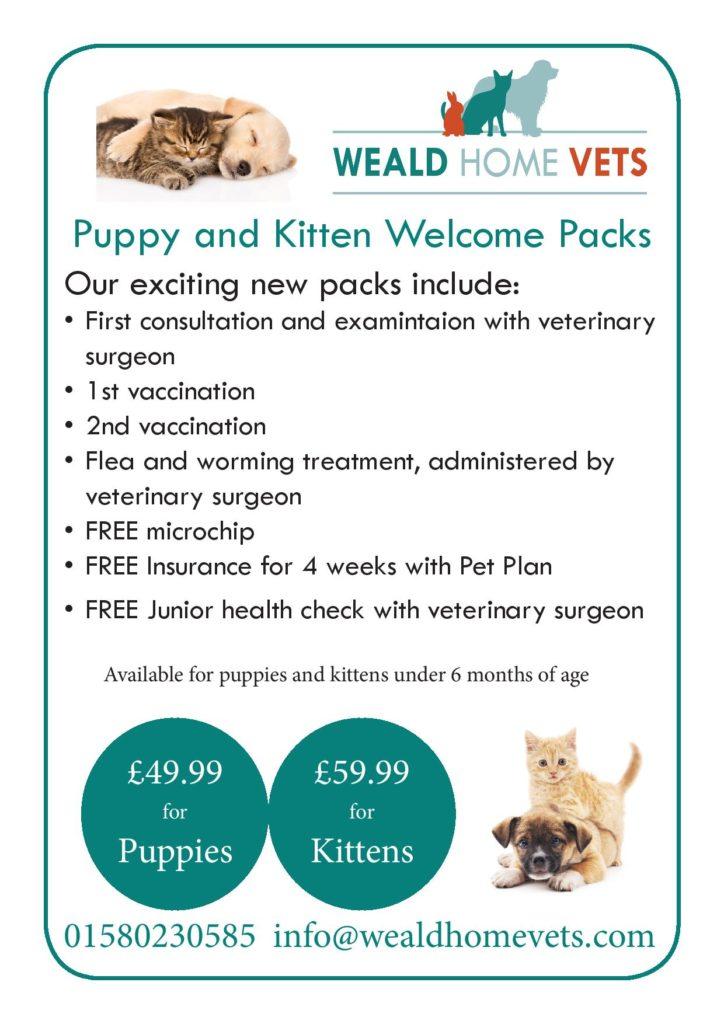 Puppy & Kitten Offer