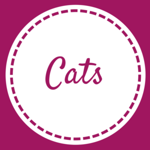 Cats - Home Page - May 2018 (1)