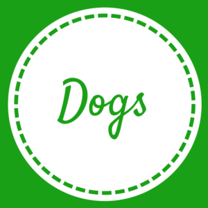Dogs - Home Page - May 2018 (1)